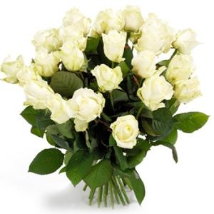 witte-rozen-groot