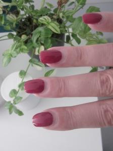 pierre ricaud nagellak