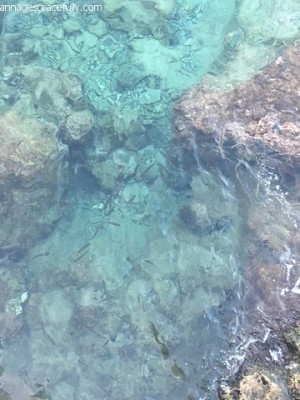 Vakantieplog Kreta (11)