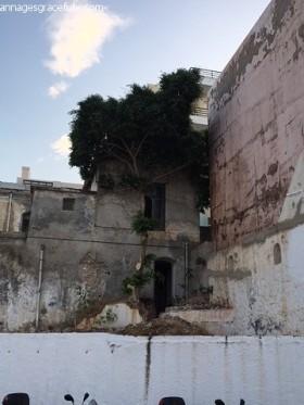 Vakantieplog Kreta (27)