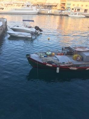 Vakantieplog Kreta (8)